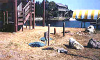 This alternative waste treatment system was designed for a 26- home subdivision on an island off the Florida Gulf Coast. The effluent has a 98% reduction of BOD, suspended solids and is used for landscape irrigation.